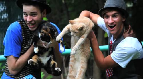 GANGNAM STYLE (강남스타일) - PSY Parody (Cats, Chapstick, And Horses)