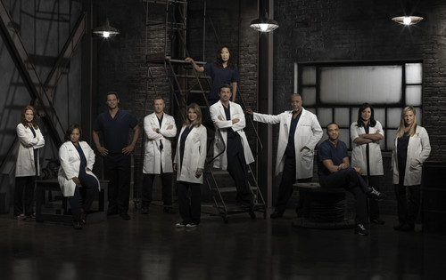 Grey's Anatomy Hintergrund called Grey's Anatomy Season 9 Cast Foto