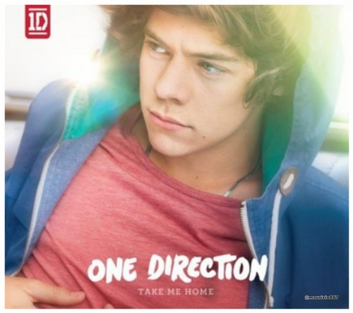 One Direction wallpaper possibly with a portrait called Harry Styles ,Take Me home (2012) Slipcase