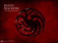 House Blackfyre - game-of-thrones wallpaper