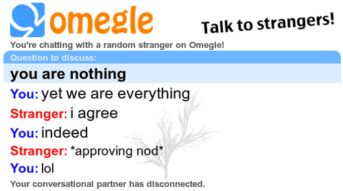 Interesting Omegle Conversations