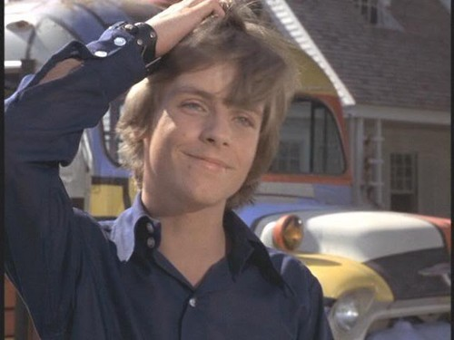 Jerry (Mark Hamill ) inThe partrids Family