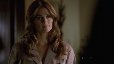 Kate Beckett wallpaper containing a portrait entitled Kate 5x03