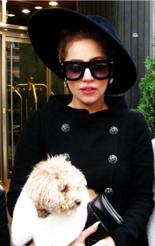 Lady GaGa & Fozzi