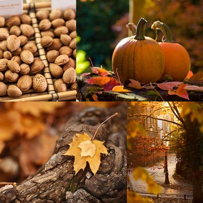 Lovely Autumn