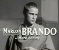 Mark Antony - marlon-brando photo