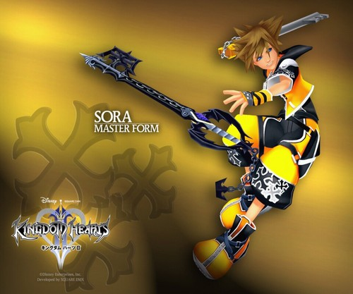 Kingdom Hearts 2 fond d'écran entitled Master Sora