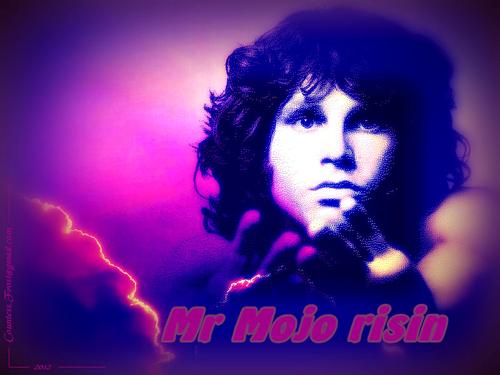 Mr Mojo risin
