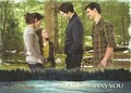 New BD Stills from Trading Cards and Complete Film Archive - team-twilight photo