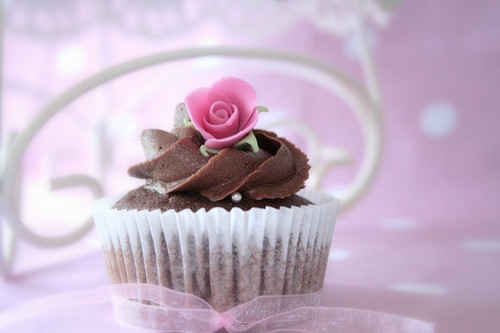 Cupcakes wallpaper containing a cupcake entitled Pretty Cupcakes