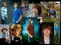 Ron - ronald-weasley wallpaper