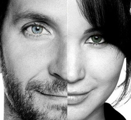 Silver Linings Playbook wallpaper containing a portrait called SLP