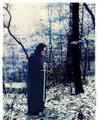Severus Snape Sword of Griffindor - severus-snape fan art