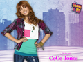 Shake it Up Season 3 - shake-it-up photo