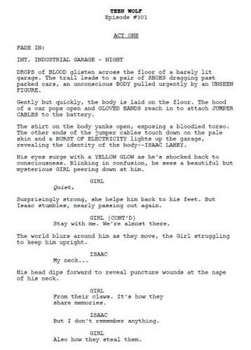 Spoiler: Season 3 First Scenario Page!!