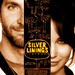 Spot Icon - silver-linings-playbook icon