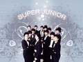 Super Junior wolpeyper