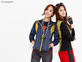 T-ara - t-ara-tiara wallpaper
