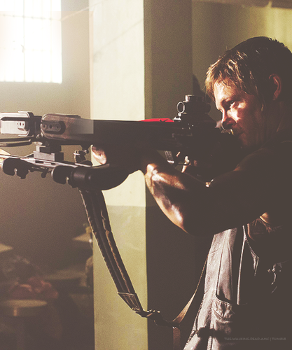 The Walking Dead wallpaper possibly with a rifle, a rifleman, and a musket called TWD