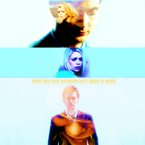 The Doctor and Rose wallpaper containing a portrait titled The Doctor and Rose