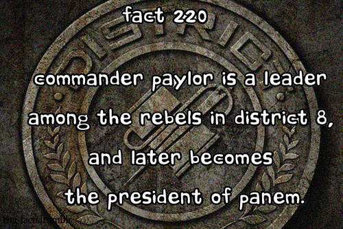 The Hunger Games facts 201-220