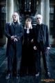 The Malfoy Family - tom-felton photo