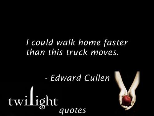 Twilight 语录 481-500