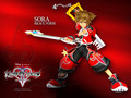 Valor Sora - kingdom-hearts-2 photo