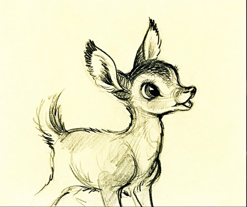 Walt 迪士尼 Sketches - Bambi