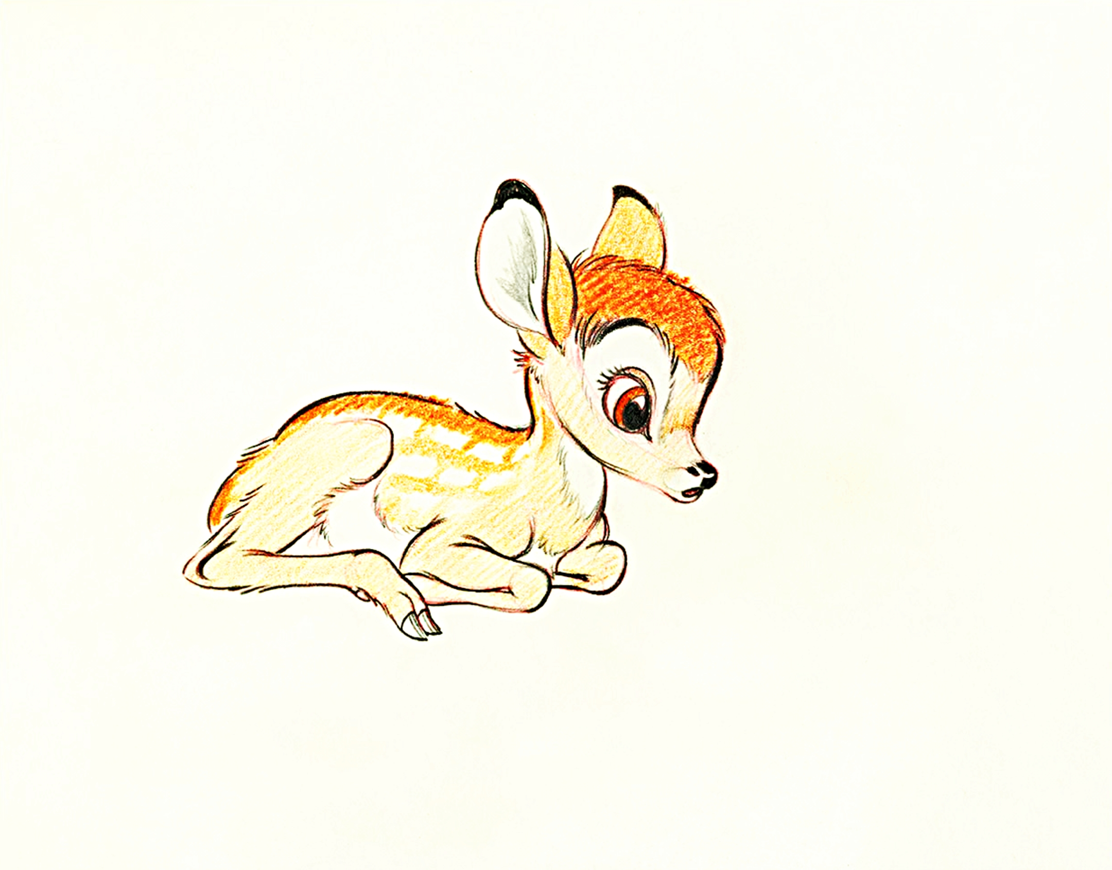 Walt Disney Characters images Walt Disney Sketches - Bambi ...