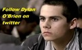 dylan - dylan-obrien photo
