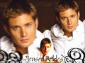  Jensen Ackles  - jensen-ackles wallpaper
