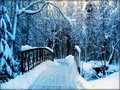 ★ Winter ☆  - winter wallpaper