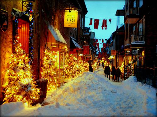 ★ Winter ☆