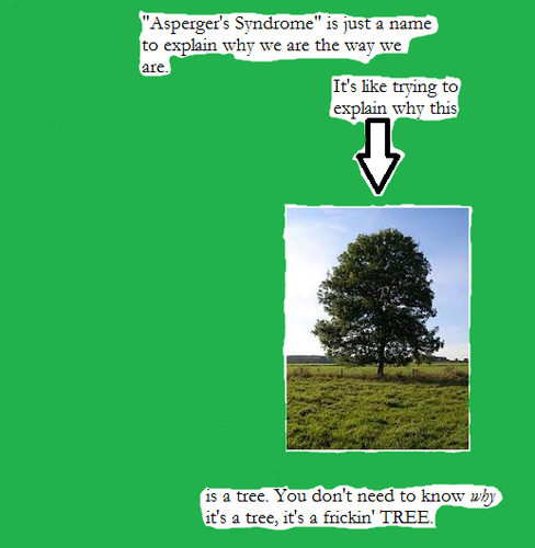 Asperger's Truth