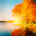 Autumn Dreams - daydreaming icon