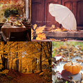 Autumn ~ ♥ - autumn photo
