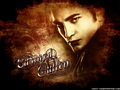 Awesome - twilight-series wallpaper
