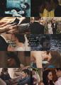 Bella & Edward Forever