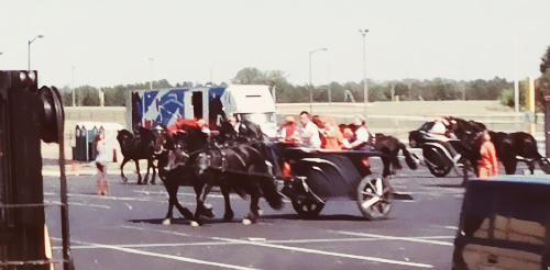 Chariots & chevaux at Atlanta Speedway