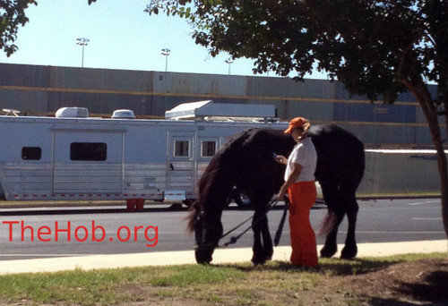 Chariots & 马 at 'Catching Fire' Set at Atlanta Speedway