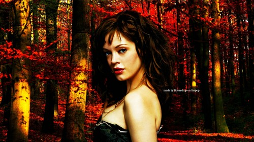 Charmed Wallpaperღ Autumn Special