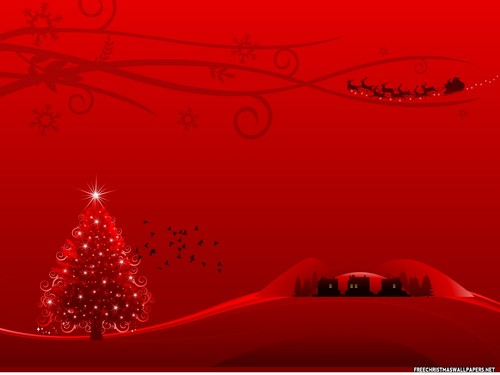 Christmas wallpaper possibly containing a sign and a street titled Christmas