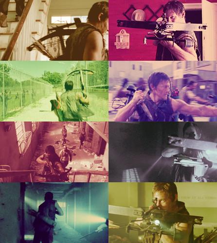 """Daryl Dixon in """"Seed"""""""