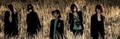 Dir en grey - New Look