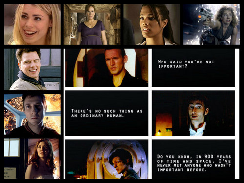 Doctor Who Companions: Everyone's Important