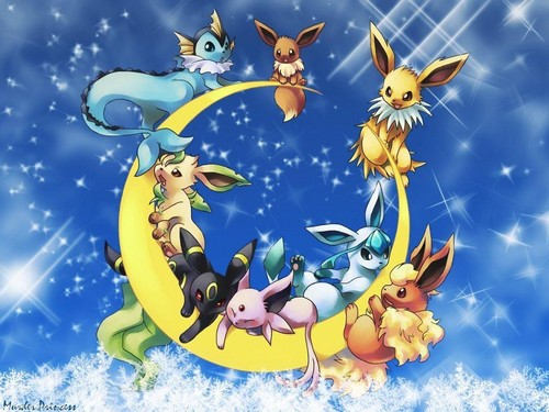 pokemon wallpaper possibly containing anime titled Eeveelution wallpaper