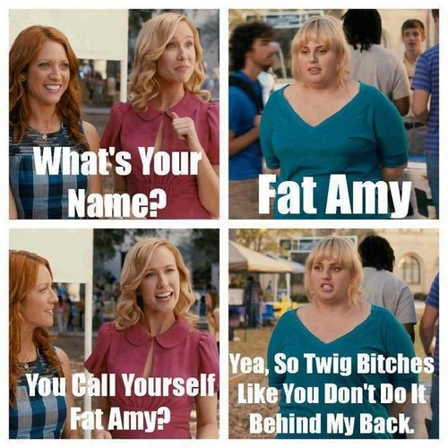 Voices (Pitch Perfect) wallpaper possibly with a portrait titled Fat Amy