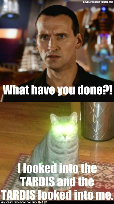 Doctor who for whovians funny d