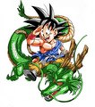 고쿠 and Shenron